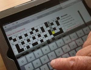 Clue Detective ePuzzles